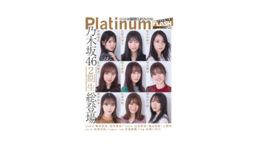Platinum FLASH Vol.12 限定特典付き